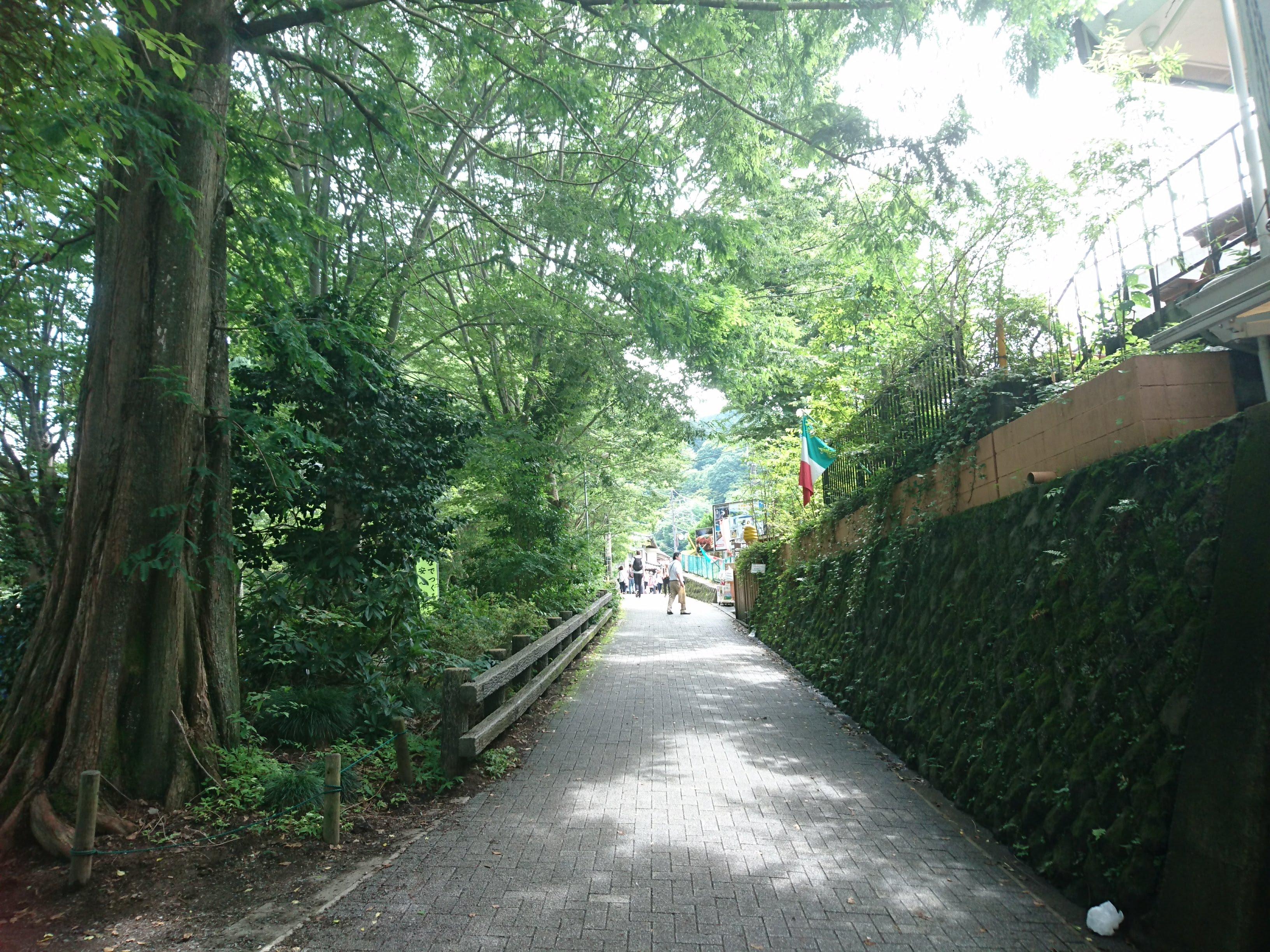 京王線「高尾山口」駅から高尾山へ向かう道