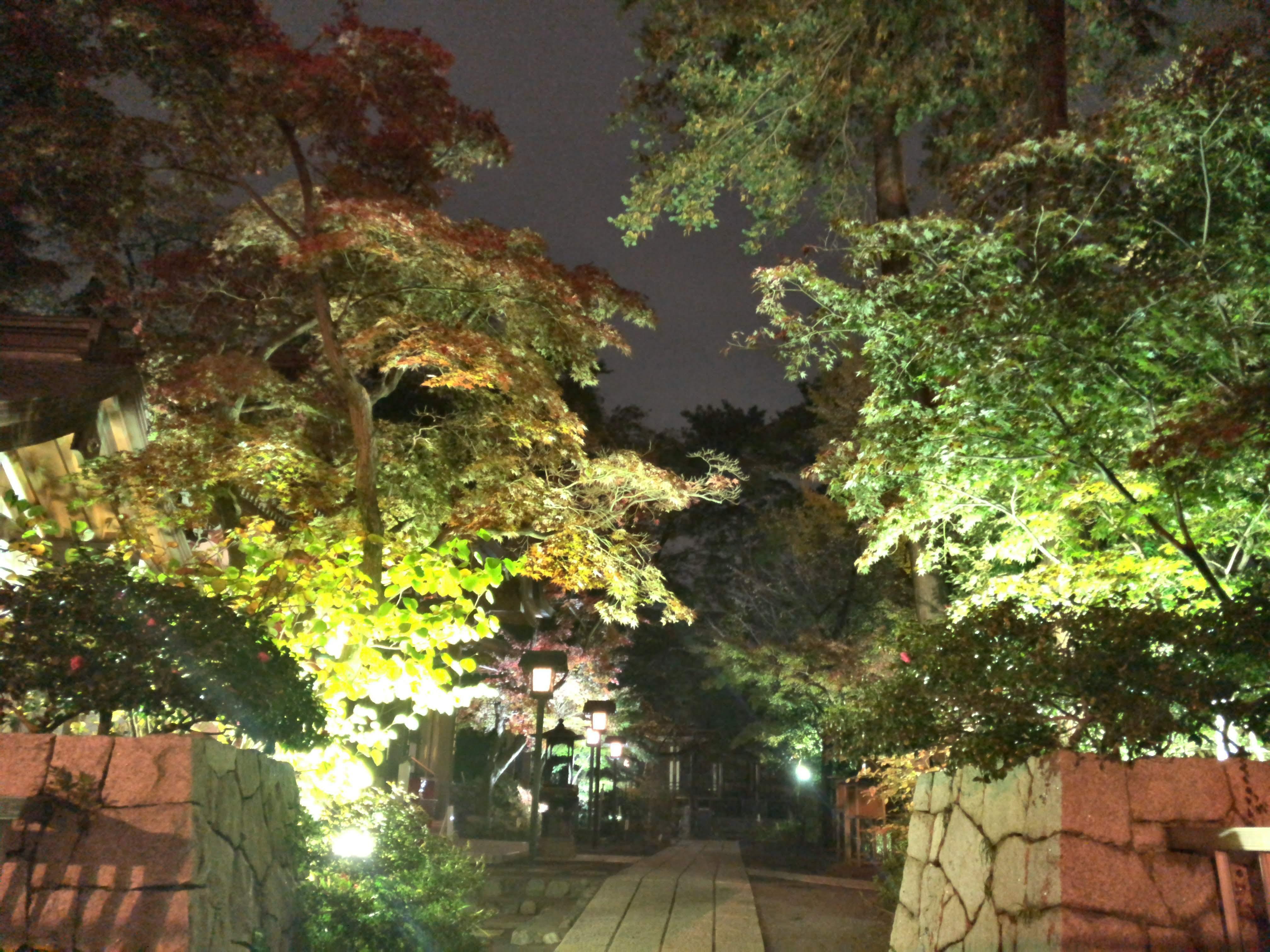 高幡不動「ライトアップ」