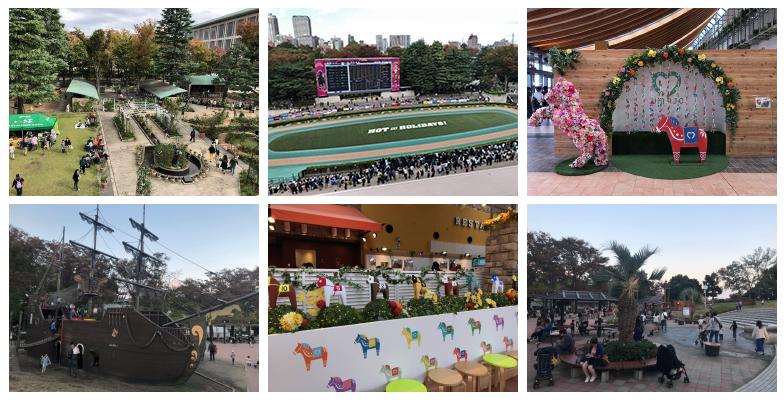 東京競馬場 周辺・設備