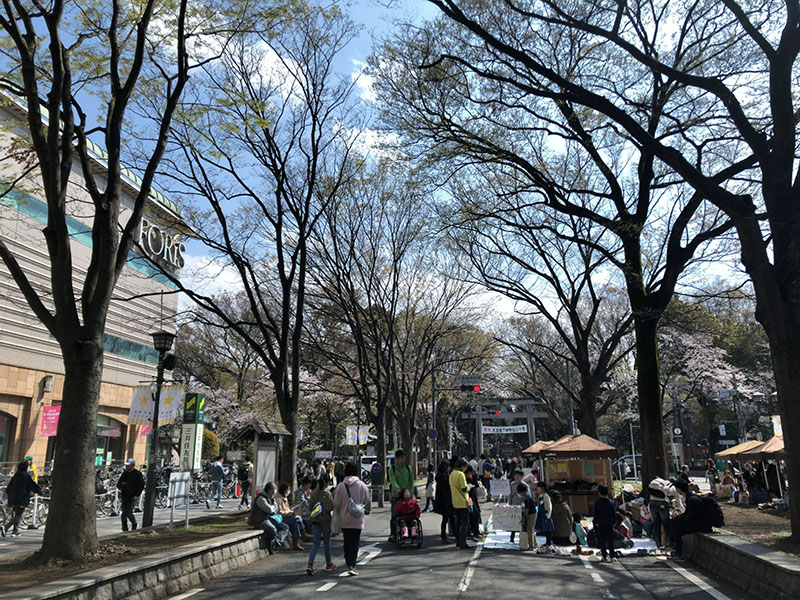 府中 けやき並木イベント 歩行者天国