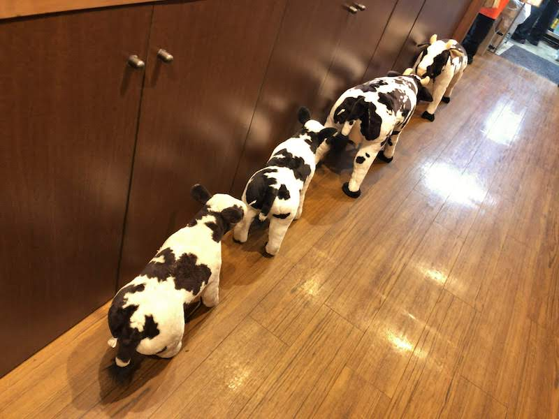 調布「焼肉いわい」牛さんの行列
