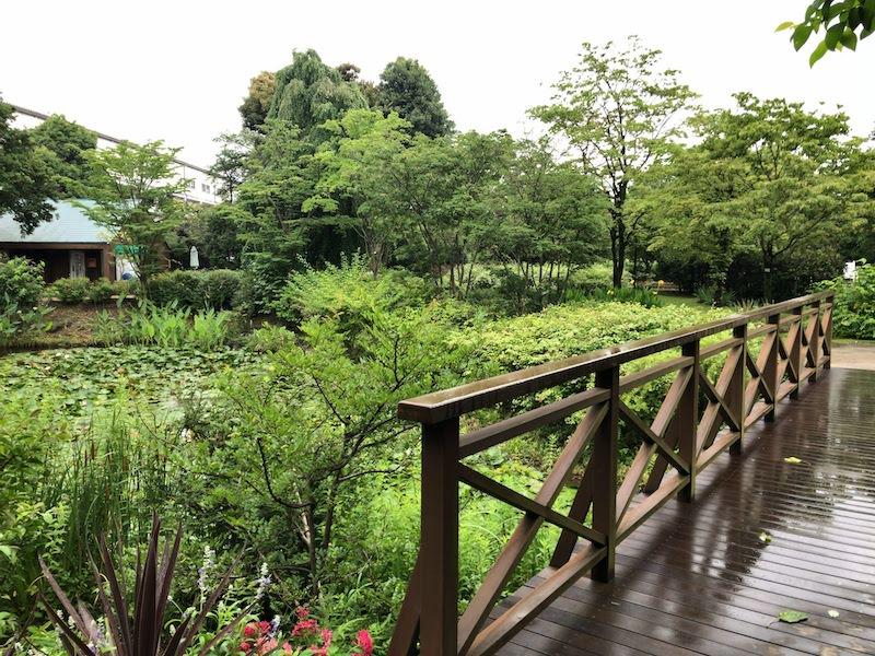 京王多摩川「バーベキュービレッジ」景色
