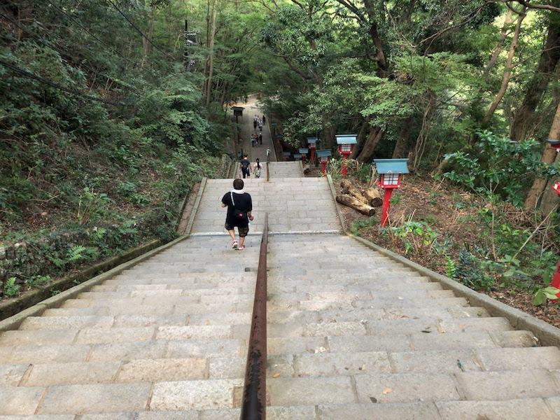 高尾山「1号路 登山」男坂