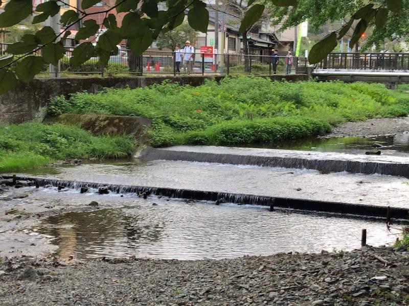 高尾山「川のせせらぎ」
